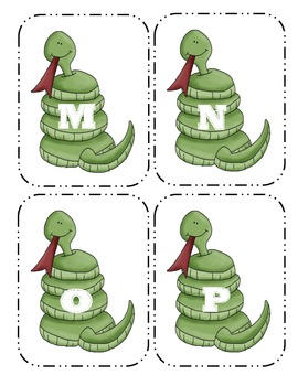 Snake Capital  Flash Cards