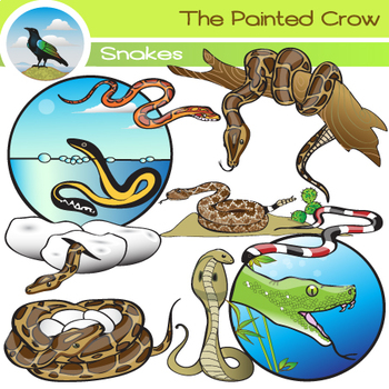 Snake Clip Art - 19 Piece Set