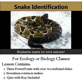 Snake Identification - 17 Common Snakes - with assessment