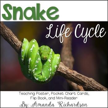 Snake Life Cycle