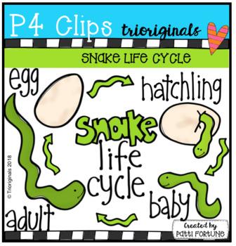 Snake Life Cycle (P4 Clips Trioriginals)