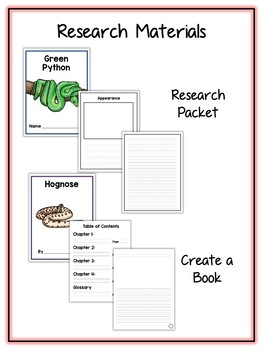 Snake Research Project - 10 Types, Vocab Cards, Packet, Book  + More!