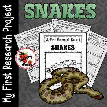 Snake Research Report