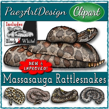 Snake Types CLIPART Bundle 104 Images Total!