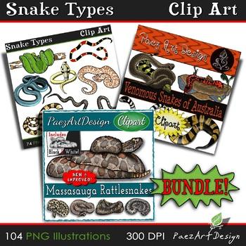 Snake Types CLIPART Bundle 104 Images Total! {Paez Art Design}