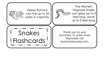 Snake Types Picture Word Flash Cards. Preschool flash cards for children.