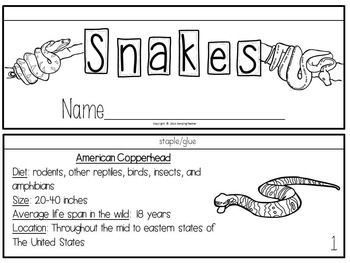 All About Snakes Activities, Posters, Books, and Fact and Opinion Cards