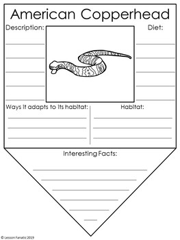 Snakes Research Pennants