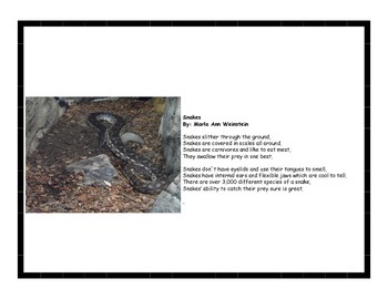 Snakes and Lizards Activity Pack