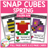 Snap Cubes Activity - Spring