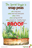 Snap Peas Poster - Available in English and Spanish!
