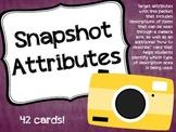 Snapshot Attributes