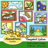 Snapshot Nature