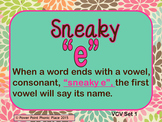 "Sneaky ""e"" words VCV Power Point and Printables"