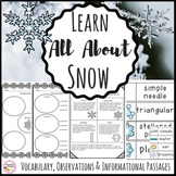 Snow Activities Science and Literacy