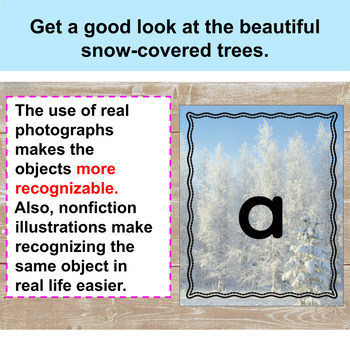 Snow: Snow-Covered Forest Alphabet Cards