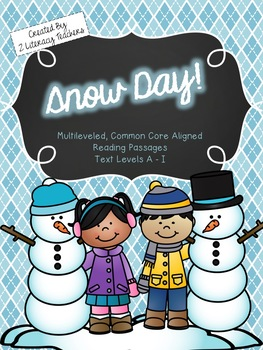 Snow Day: CCSS Aligned Leveled Reading Passages and Activities