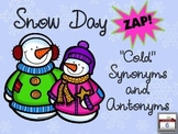 "Snow Day ZAP! ""Cold"" Synonyms and Antonyms"