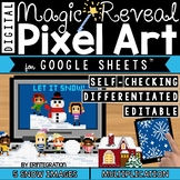 Snow Digital Pixel Art Magic Reveal MULTIPLICATION
