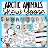 Snow Goose Activities {Arctic Animals}