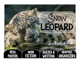 Snow Leopard-A Research Project