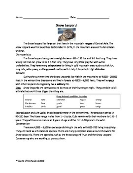 Snow Leopard - Review Article Lesson Questions Vocabulary