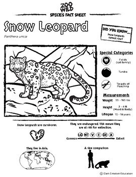 Snow Leopard -- 10 Resources -- Coloring Pages, Reading & Activities