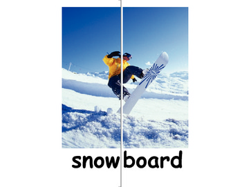 Snow Much Fun - Winter Common Core Language Arts and Science - 2nd & 3rd grade