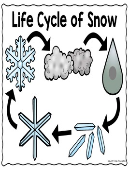 Snow Science Unit