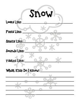 Snow Senses: A Describing Activity