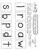 Snow Surprise  1st Grade Harcourt Storytown Lesson 18