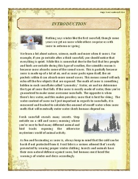 Snow Themed Nature Education Unit-Stage 2 (Magic Forest Academy)