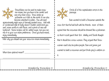 Snow Themed Non-Fiction  Reading Skills Flip Book