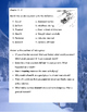Snow Treasure by Marie McSwigan Novel Reading Study Guide