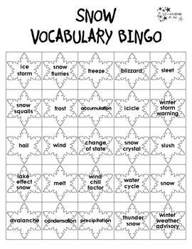 Snow Vocabulary Bingo