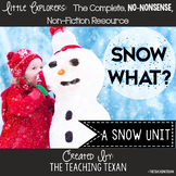 Snow What?:  A Non-Fiction Reading, Writing, and Science Snow Unit