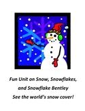 Snow and Snowflakes Webquest