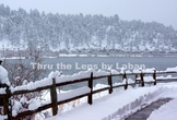 Snow on a Fence in the Winter Stock Photo #217
