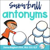 Snowball Antonyms FREEBIE