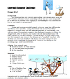 Snowball Catapult STEM Challenge