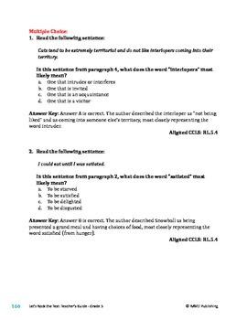 Snowball - Literary Text Test Prep
