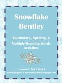 Snowflake Bentley Vocabulary & Spelling Activities