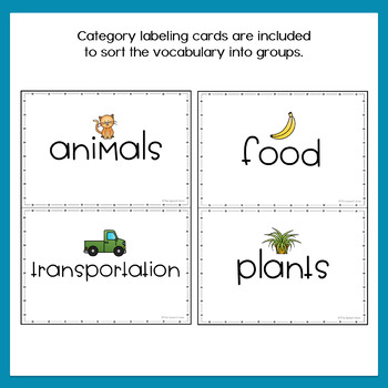 Winter Describing Vocabulary Graphic Organizer Worksheets