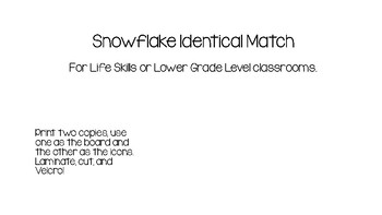 Snowflake Identical Match for Life Skills or Autism Classroom