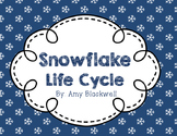 Snowflake Life Cycle