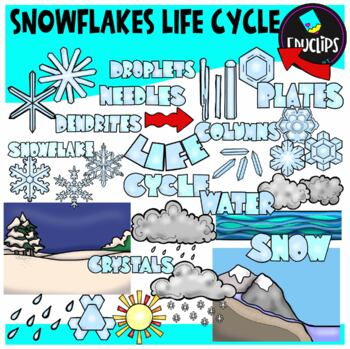 Snowflake Life Cycle Clip Art Set {Educlips Clipart}