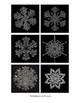 Snowflake Matching Cards
