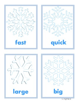 Snowflake Synonyms
