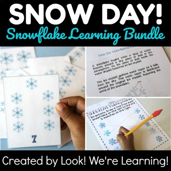 Snowflake Winter Learning Bundle - Snow Day!