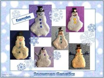 Snowman Genetics (Lab, Assessments, and More)